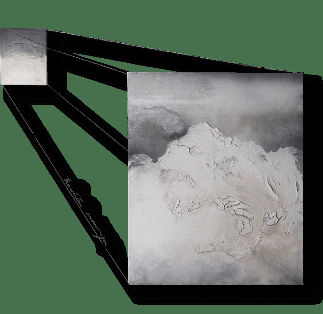 Sophie Cauvin - peintre Belge - 2015 - Translation macrocosmique